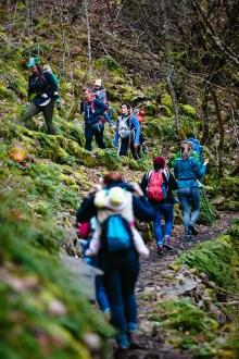 Hikers navigating switchbacks during a Hike It Baby excursion at the Upper McCord Creek trail in the Columbia River Gorge.